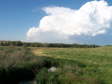 A July Storm PassesSummer storms include thunderheads and lightning and can be exciting and dangerous.