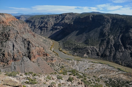The Rio GrandeA view of the Rio Grande, the lowest point in Bandelier, from the mesa above Frijoles Canyon