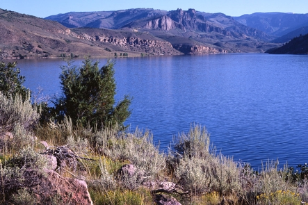 Blue Mesa Reservoir, Curecanti National Recreation Area