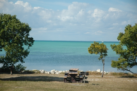 Elliott Key CampgroundFeatures waterside and partially forested camping area, picnic tables and grills.