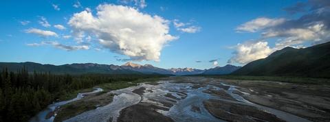 Teklanika RiverA short walk west of Teklanika (Tek) Campground is Tek River, which flows northward from the Alaska Range.