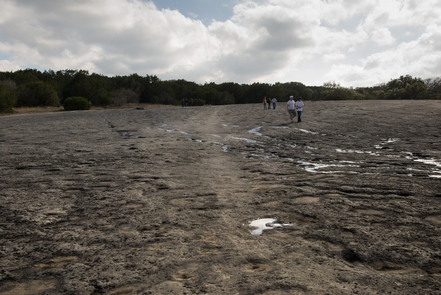 McKinney Falls State Park, Travis County, TexasRecent research reveals that in 1716 the expedition of Domingo Ramуn followed the left bank of Onion Creek along the western edge of McKinney Falls State Park to its junction with Williamson Creek. You can walk in rock indentations in the creek bed.