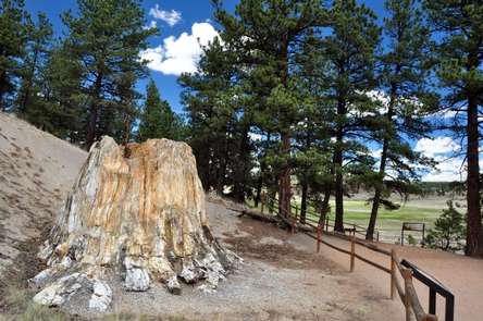 Preview photo of Florissant Fossil Beds National Monument
