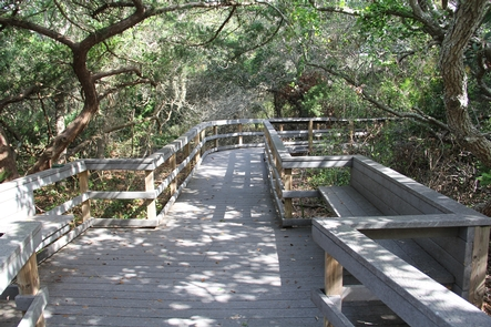 Nature TrailFollow an elevated boardwalk through some pristine Florida barrier island habitat.