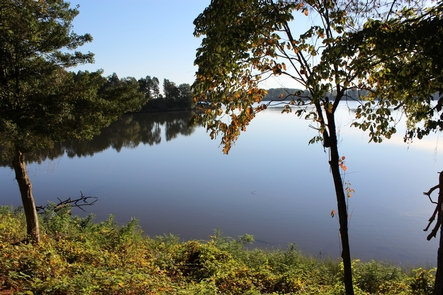 Popes CreekThis is the scene that our visitors see from our Visitor Center