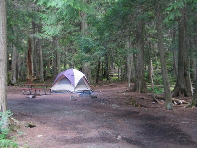 Avalanche CampgroundNestled among western hemlock and western red cedar