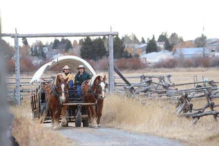 Wagon RideDraft horses, especially Belgians, were utilized on the ranch. The ranch still uses them for putting up hay, feeding cattle, and giving tours of the park.