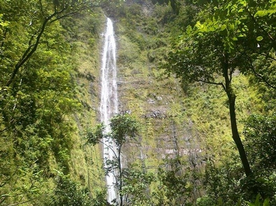 Waimoku WaterfallWaimoku waterfall in the park's Kipahulu District