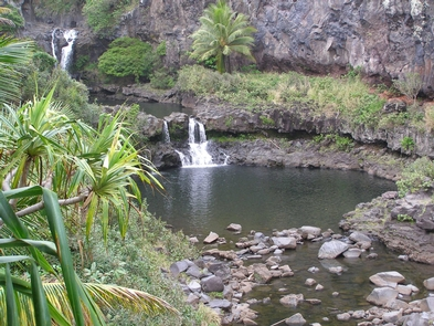 The Pools of ?Ohe?o in the park's Kipahulu District