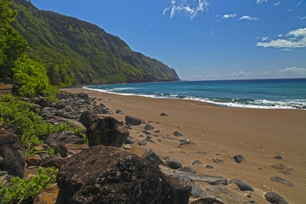 Black Sand BeachBlack Sand Beach is one of several sandy beaches at Kalaupapa, most known for its sea turtle nesting habitat.