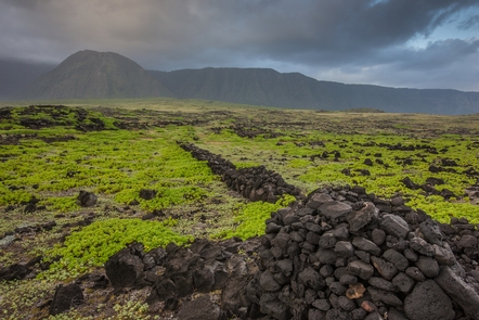 Archeological Sites at KalaupapaKalaupapa is also home to one of the most well-preserved archeological complexes in all of Hawaii.