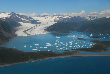 Bear Glacier AerialBear Glacier is the largest of nearly 40 glaciers that flow from the Harding Icefield.