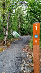 Exit Glacier Campground site #1Sites #1 and #12 are both ADA accessible sites, with wide paths and space for tents.