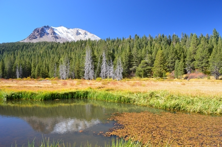 Hat CreekLassen Volcanic's rugged volcanic landscape is softened by numerous meadows, lakes, and creeks.