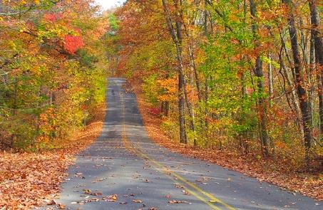 Scenic Drive (AL Hwy 176) in the Fall