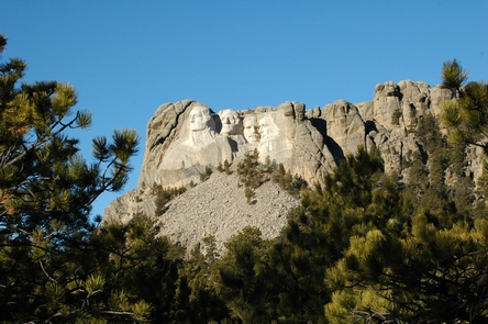 Mount Rushmore Through the TreesMount Rushmore viewed from a distance through ponderosa pine trees.