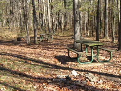 Rocky Springs Campground in AutumnCampsites are available on a first come, first serve basis. No reservations.
