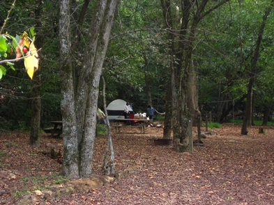 Glade Creek CampgroundCampsite at Glade Creek Campground
