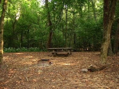 Glade Creek CampgroundCampsite at Glade Creek Campground