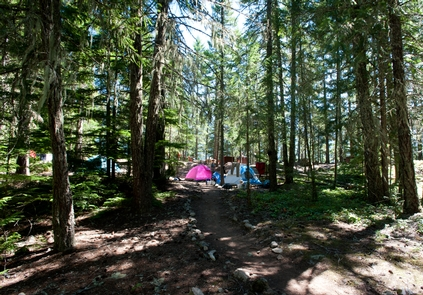 Camping on Ross LakeGrab your tent, your sleeping bag, and adventurous soul and camp along Ross Lake.