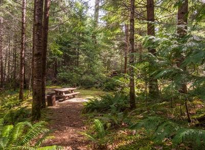 Cave Creek Campgound Camp Site