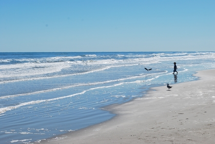 A boy at play on scenic Padre IslandOver 60 miles of beach offers beautiful scenery and fun for the whole family.