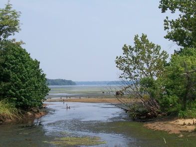 Southern MarylandPiscataway Park offers a glimpse into the wildlife living in the wetlands of Southern Maryland.