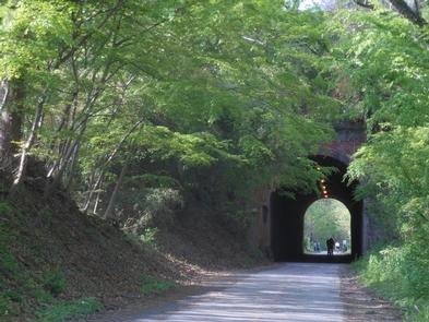 Northern VirginiaA biker rides on the trails in Northern Virginia.