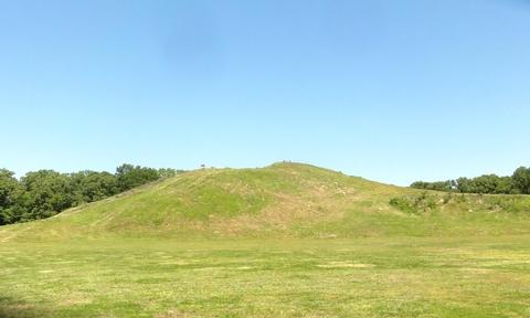 Bird MoundA grassy green mound.
