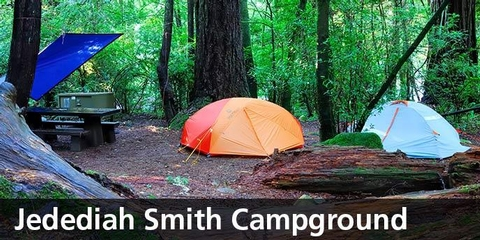 Jedediah Smith tent camping