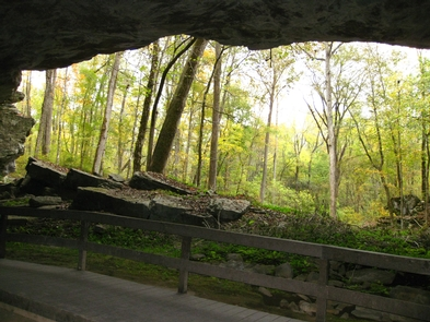 Looking out of the cave shelterLooking out of the cave shelter in the fall