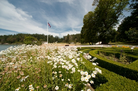 English Camp Formal GardenThe formal garden in bloom