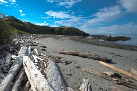 Grandma's CoveGrandma's Cove is a popular spot for park visitors