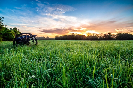 Sunrise at Mendenhall's Artillery TrailOn January 2, 1863, fifty-seven Union cannons fired from this line ending the Battle of Stones River by killing or wounding more than 1,800 Confederates in less than an hour.