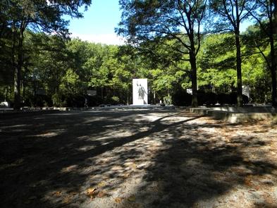 Across Theodore Roosevelt Island Memorial PlazaEnjoy a hidden gem, an island oasis, in the busy Washington, D.C region.