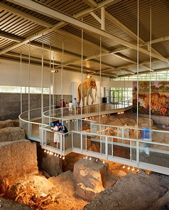 Interior of Dig ShelterVisitors view fossils from above using the elevated walkway.