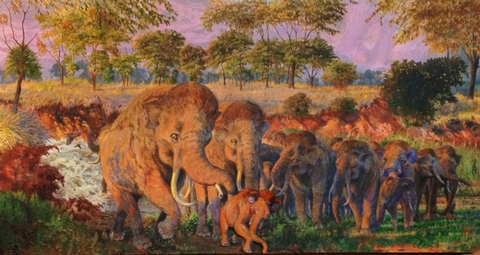 Mammoth Herd MuralThis paleontological site represents the nation's only recorded discovery of a nursery herd of Columbian mammoths.