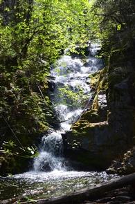 Boulder Creek FallsOne of the four major waterfalls- Boulder Creek Falls