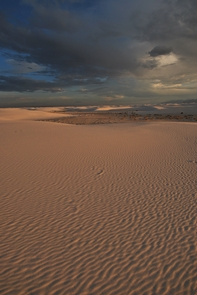 Preview photo of White Sands National Park