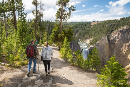 Exploring the South Rim Trail at CanyonIf you are willing to walk a little ways, you can find some extraordinary views of the Grand Canyon of the Yellowstone, like this trail on the South Rim.