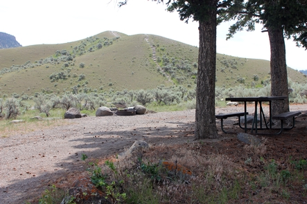 Mammoth Hot Springs Campground 5Camping sites at Mammoth Hot Springs Campground