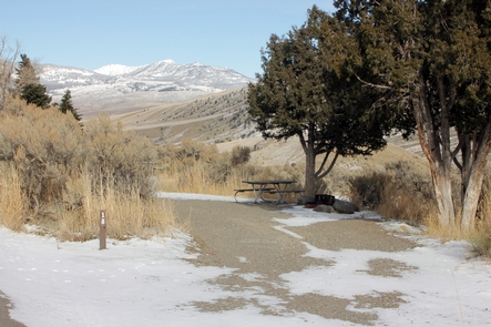 Mammoth Hot Springs Campground 7The Mammoth Hot Springs Campground is the only campground open year-round.