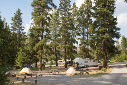Tower Fall CampgroundA view of the Tower Fall Campground