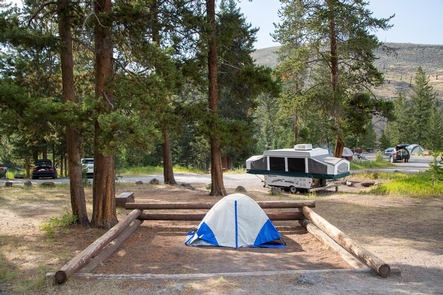Tower Fall CampgroundCampsite at Tower Fall Campground