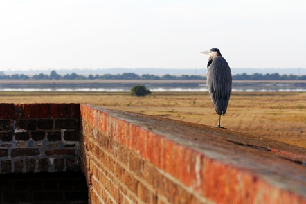Preview photo of Fort Pulaski National Monument