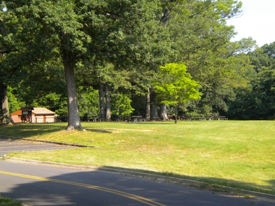 Picnic Area A at Fort Washington ParkPicnic Area A is one of the areas available to reserve.