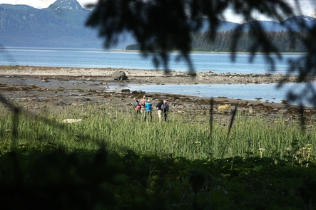 Nice views of the Bartlett Cove ShorelineThe campground is located along the shoreline in Bartlett Cove.