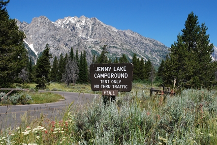 Jenny Lake Campground Welcome SignJenny Lake Campground fills early, and only allows tent camping!