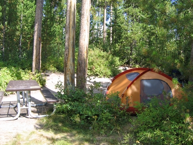 Signal Mountain Campground Tent in the ForestCampsite with Shade