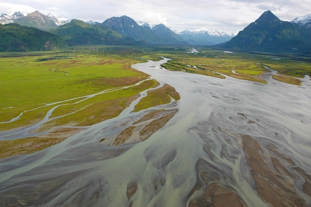 West Glacier CreekEstuaries where rivers meet the sea provide a mosaic of rich habitats along the Cook Inlet Coast that support high numbers of bears and other wildlife.